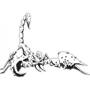 HB-Scorpion4-500x500