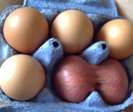 soy un yonki huevones