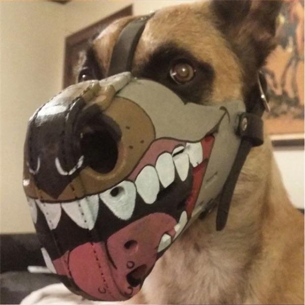 soy un yonki perro del mal 01