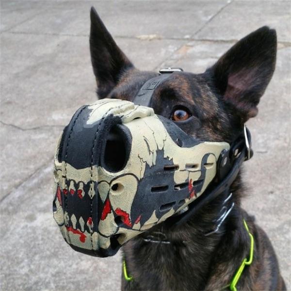 soy un yonki perro del mal 05