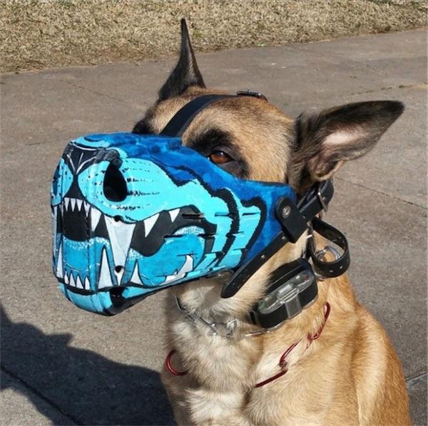 soy un yonki perro del mal 12